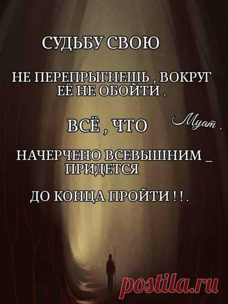 #Статусы_Цитаты_Афоризмы_В