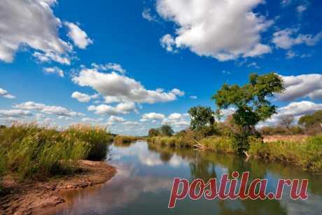 Национальный парк Крюгер в Африке - Путешествуем вместе