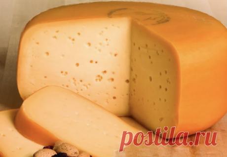 Сварили твердый сыр Гауда на своей кухне
