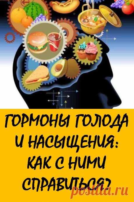 Гормоны голода и насыщения: Как с ними справиться? По наблюдению известного американского диетолога Келли Левека одной из причин набора лишнего веса могут стать гормоны. При эндокринных заболеваниях и нарушениях они влияют на чувство голода и насыщения, заставляя человека чаще перекусывать, постоянно переедать при стрессе. При коррекции их уровня можно похудеть без особых усилий. #здоровье #лишнийвес #гормоны #гормоныголодаинасыщения