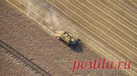 Экспорт пшеницы из России вырос Экспорт пшеницы и меслина из России в январе — марте 2020 года вырос на 11 процентов по сравнению с показателем за аналогичный период прошедшего года и составил 7,3 миллиона тонн. Об этом говорится в ...