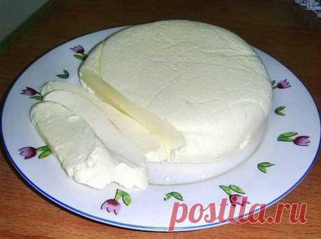 Делаем брынзу сами: из 2 л молока получаем 1 кг сыра! - Женский Журнал Из 2 литров молока получим 1 кг СЫРА Никаких консервантов, усилителей вкуса и прочей «химии»! Всей семьей обожаем ДОМАШНЮЮ БРЫНЗУ, а ее готовить одно удовольствие! Нам не понадобится ни закваски, ни ферменты, на выходе из 2 литров молока получим 1 кг СЫРА! В разы вкуснее и полезнее магазинной! Домашнюю брынзу можно кушать ужечерез 4 часа. …