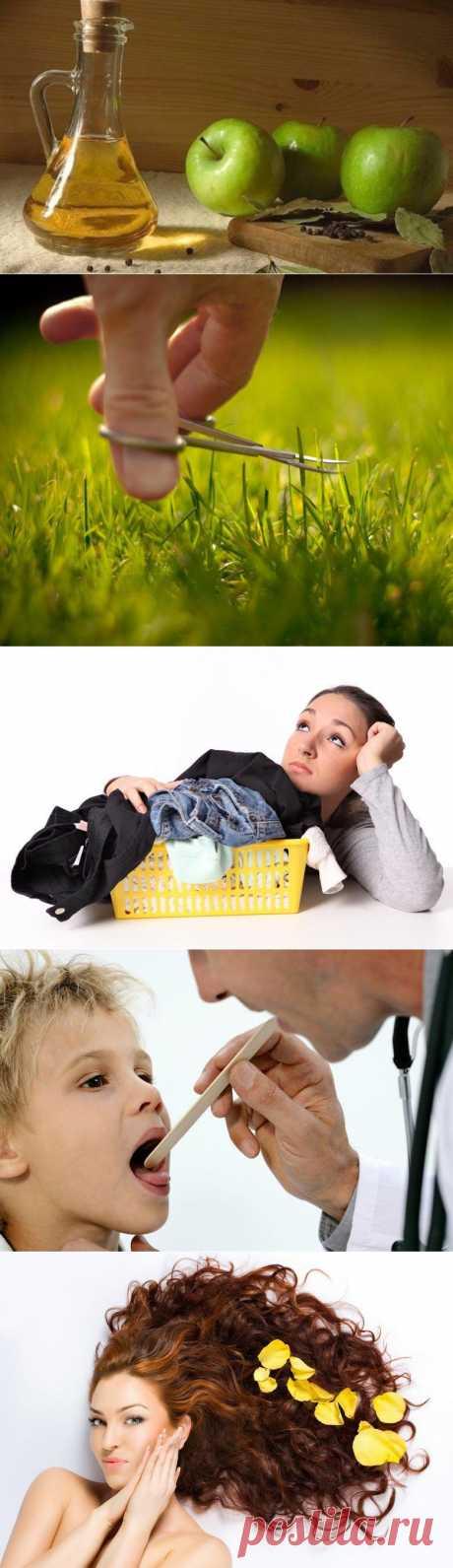 Como usar el vinagre en la vida cotidiana \/ Todo para la mujer