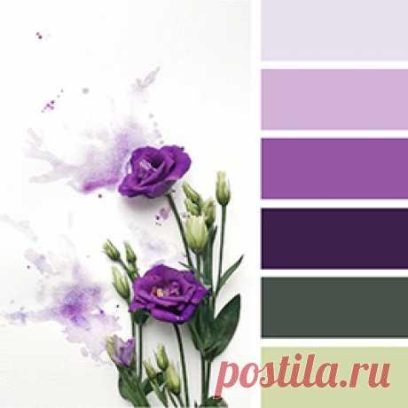 Лучшие оттенки сиреневого и фиалкового цвета - смотрите с чем сочетать и как оттенять в интерьере  на сайте Стоун Флор Новосибирск