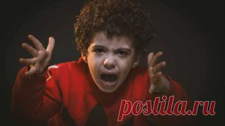 Что делать, когда ребенок злится? Советы детского психолога - Папамамам — МИФ Бывало увас так, что всегда нежный испокойный малыш начинает кричать, топать ножками, драться, бросать игрушки, кусаться? Так дети выражают свои негативные эмоции,чаще всего злость игнев. Важно понять: отрицательные чувства испытывают все: ивзрослые, идети. Это нормально. Злость нельзя запретить, как идругие эмоции. Ктомуже, она это чувство бывает полезным! Проведем аналогию сежом. Для чего ему иголки? Всем …