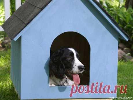 Собачья будка с двухскатной крышей своими руками!