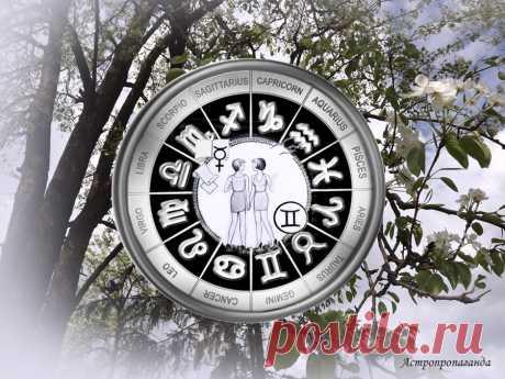 Заглянуть в тайну и сохранить ее. Гороскоп для Близнецов с 29 марта по 2 мая 2021 | Астропропаганда | Яндекс Дзен ♊✨ Автор: астролог Нина Стрелкова. ✧ Планеты способствуют росту любопытства, особенно к вещам таинственным, не полностью изученным. Не обязательно это должна быть эзотерика или поиски снежного человека. Это может быть интерес к психологии, астрологии, всевозможным тестам, оригинальным видам искусств. Возможно, какая-то информация окажется для вас полезной, поможет познать себя...