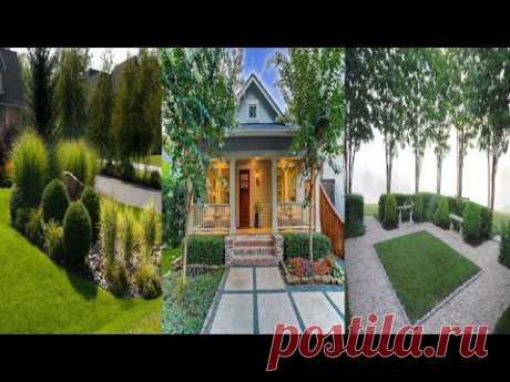 Идеи оформления двора с примерами отделки и декора