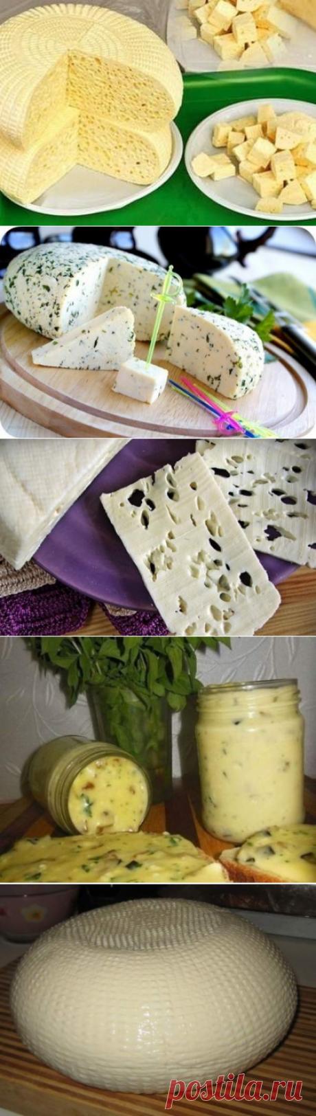 Домашние сыры - 20 вариантов приготовления - Простые рецепты Овкусе.ру