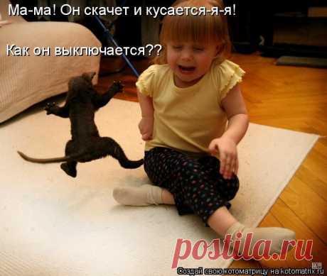 Очередная забавная котоматрица.