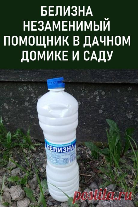 Белизна — незаменимый помощник в дачном домике и саду. Отправляясь на свою дачу, обязательно захватите с собой несколько бутылочек с белизной! И сейчас я вам расскажу — зачем! #дача #сад #белизна #мойдом