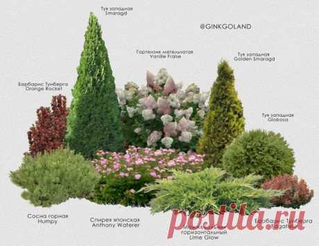Ландшафтный дизайн только с любовью – 8 идей садовых композиций   Идеи дизайна (Огород.ru)
