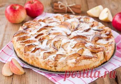Шарлотка с яблоками в духовке - 6 простых рецептов с пошаговыми фото