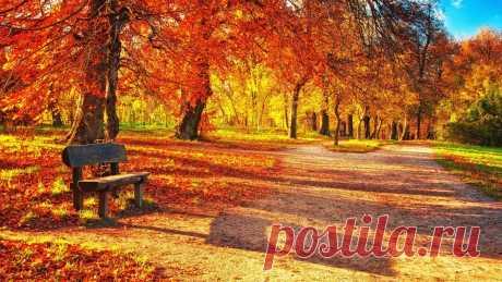 Обои скамейка, осень, парк, листва картинки на рабочий стол, фото