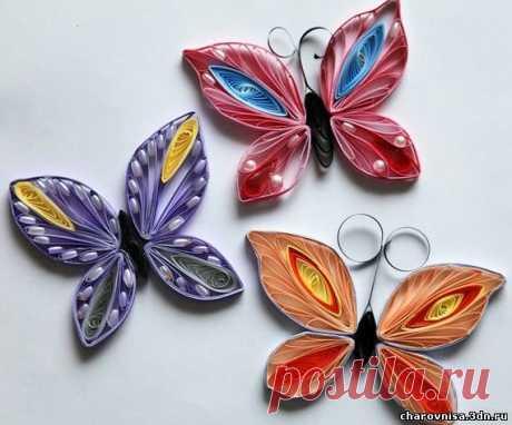 «Очень красивая бабочка из бумаги. Идеи для квиллинга.» — карточка пользователя trubitsina-poberezshn.olesya в Яндекс.Коллекциях