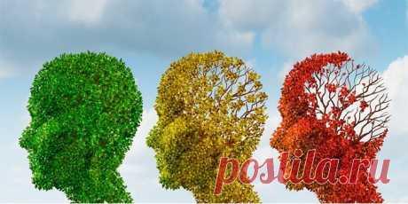 Процесс старения мозга после 50 лет у человека Старение организма вызывает изменения в мозге после 50. Причины и факторы риска, признаки снижения активности, рекомендации пожилым по минимизации или предотвращению нарушений