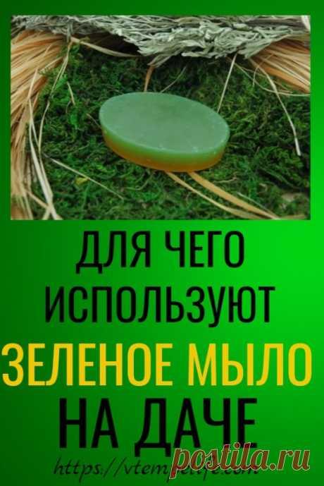 Для чего используют зеленое мыло на даче? | В темпі життя