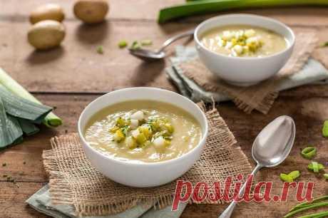 Чешский сытный картофельный суп — Едим дома