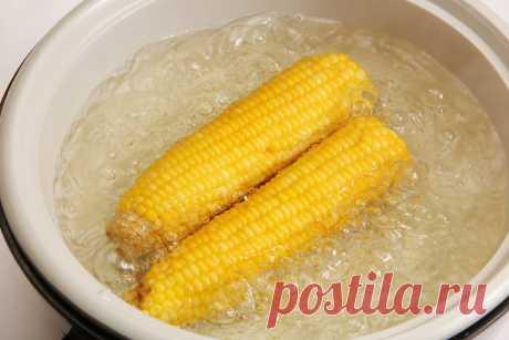 Оказывается я всю жизнь неправильно варила кукурузу. Спасибо подписчику, я прозрела   Бюджетка   Яндекс Дзен