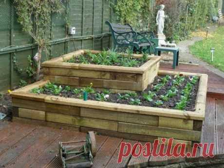 Грядки для дачи (37 фото): красивые для огорода, как сделать в ящиках своими руками, лучше устроить зеленую, идеи