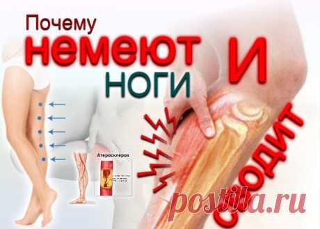 doclvs.ru | Почему сводит и немеют ноги: причины, симптомы; диагностика; лечение
