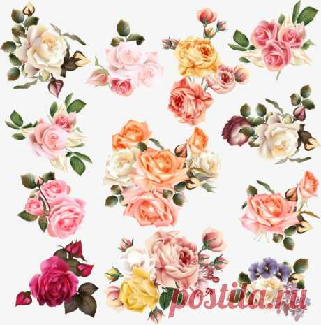 hand-painted flowers More than 3 million PNG and graphics resource at Pngtree. Find the best inspiration you need for your project.