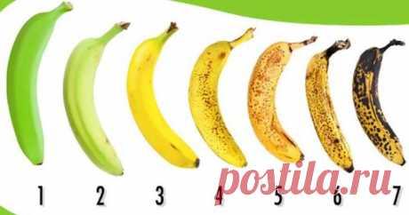 Банан под каким номером вы бы купили? Очень многие ошибутся в данном выборе! Посмотрите правильный ответ! - Все самое интересное! Бананы — один из самых недооцененных фруктов. По экзотичности они уступают другим...