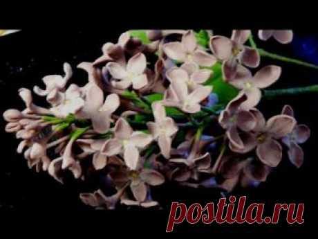 Сирень из холодного фарфора / How to make a lilac from a cold porcelain