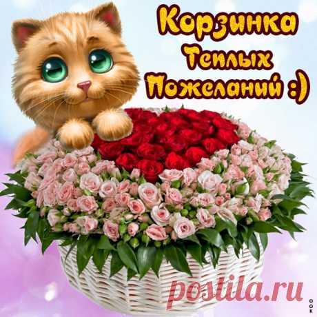 Картинка с пожеланиями с котиками
