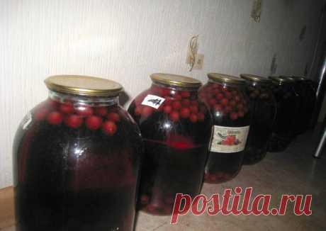 (2) Компоты на зиму - пошаговый рецепт с фото. Автор рецепта Ирина Сергеева . - Cookpad