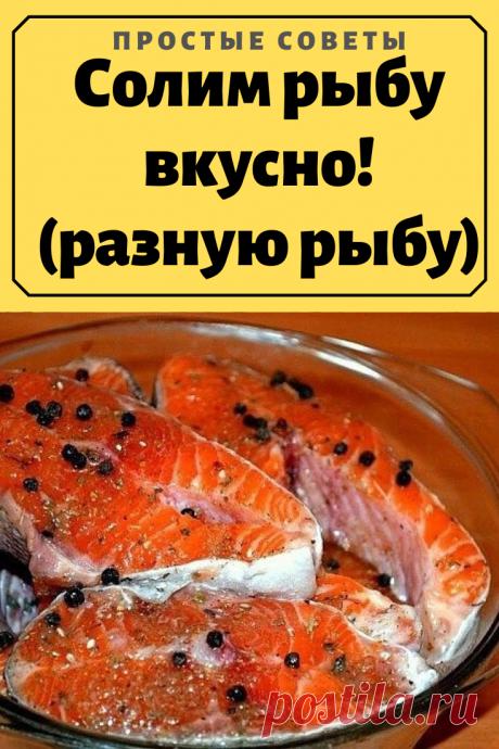 Солим рыбу вкусно! (разную рыбу)Содержание МАринад для красной рыбы Сельдь пряная Солим любую мороженую рыбу