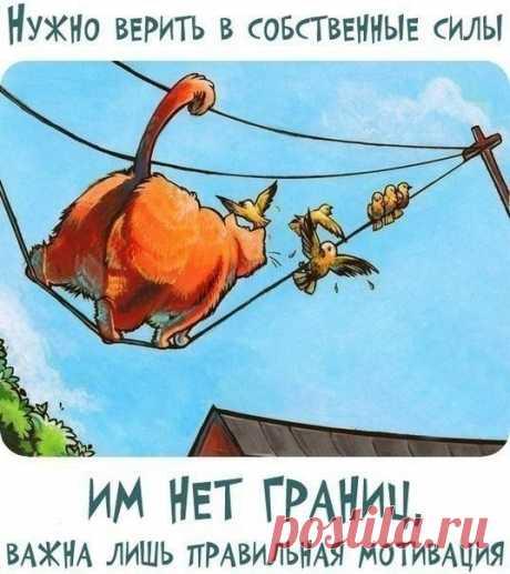 🌞🌝 ХА-ХОтушки 🌞🌝🌞 Прикольные фразочки в картинках 🌝🌞 Хорошего вам настроения!!!
