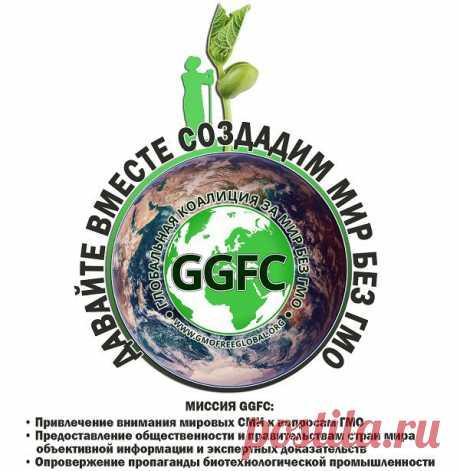 Создана Глобальная коалиция за мир без ГМО