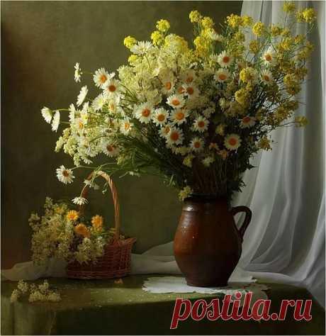 Still life Motifs to paint and art material в 2019г. Снимки натюрмортов, Цветы и Натюрморт в Яндекс.Коллекциях