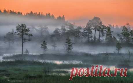 Белые ночи Карелии. Фотограф Андрей Грачев.
