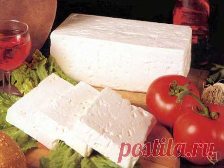 Recipe of Sheep cheese | Recipes of cheese | Cheese House: in total for house cheese making