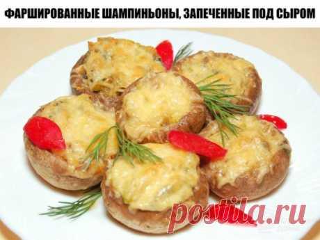Фаршированные шампиньоны, запеченные под сыром Очень простая в приготовлении, но очень вкусная и симпатичная грибная закуска.   Ингредиенты: ✓ Грибы шампиньоны крупные — 10 шт; ✓ Куриное филе — 200 гр; ✓ Сыр твердый — 100 гр; ✓ Репчатый лук — 1 шт; ✓ Зелень; ✓ Соль; ✓ Черный молотый перец; ✓ Сметана — 2 ст. л; ✓ Растительное масло — 3 ст. л