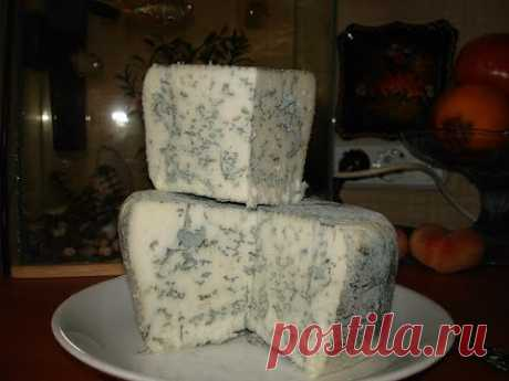 Varya cheese with a blue mold.