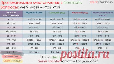 Притяжательные местоимения в немецком языке - Немецкий язык онлайн - Start Deutsch