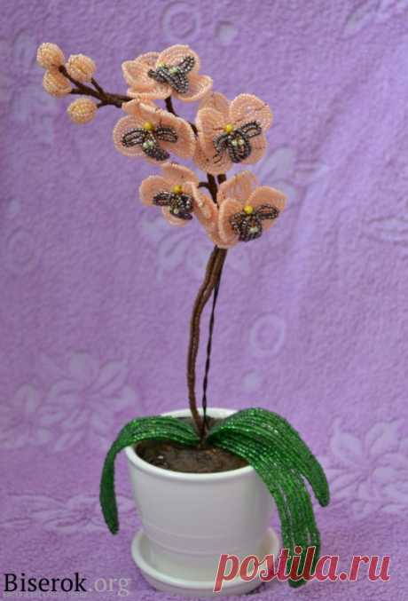 """""""Orchid Bead"""" Орхидея из бисера / Цветы / Biserok.org"""