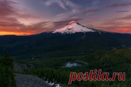 Июнь 2013: 15 лучших фотографий природы
