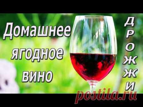 Домашнее вино. Винные дрожжи.
