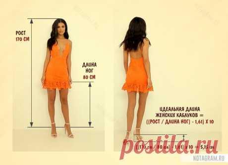 Какой высоты можно носить каблуки женщинам » Notagram.ru