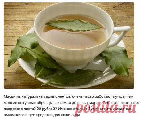 Лавровый лист поможет сохранить кожу молодой и красивой | Роза Красная | Яндекс Дзен