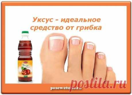 Лечение грибка ногтей уксусом