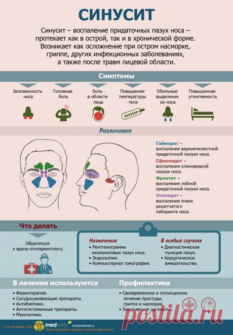 СИНУСИТ-Биология