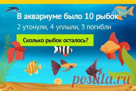 В аквариуме 10 рыбок, задача на логику