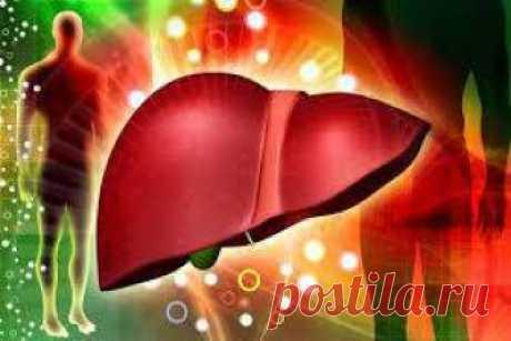 Разгрузка печени: три напитка для выведения жиров и токсинов