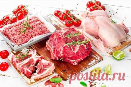 Vegetarian's nightmare: 15 useful types of meat
