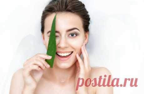 Маска из алоэ для лица в домашних условиях: простые рецепты для омоложения и увлажнения кожи. Подходит для увядающей, сухой и чувствительной кожи